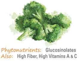 Dehydrated broccoli phytonutrients